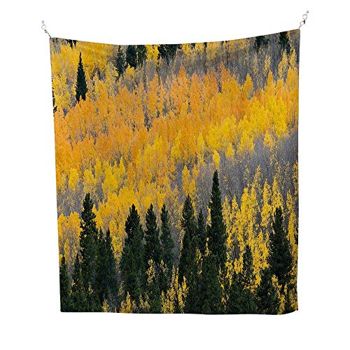 - Fallspace tapestryColorful Aspen Forest in Colorado Rocky Mountains Western Wilderness USA Theme 54W x 84L inch Wall Hanging tapestryGreen Yellow Grey