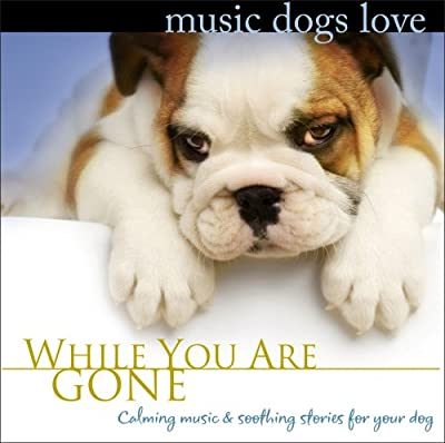 Music Dogs Love: While You Are Gone from Robbins Island Music