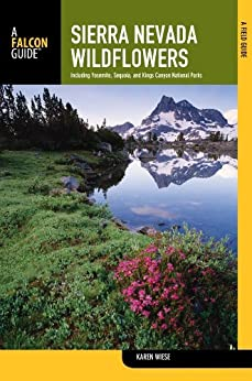 >>DJVU>> Sierra Nevada Wildflowers, 2nd: A Field Guide To Common Wildflowers And Shrubs Of The Sierra Nevada, Including Yosemite, Sequoia, And Kings Canyon National Parks (Wildflower Series). Universe clientes tractor Click other