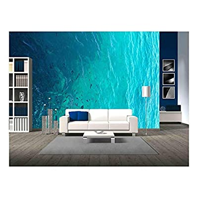 Clear Water Ocean - Wall Murals