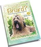Ist das ein Briard?: Eine Hunde-Erzählung vom Hölzchen aufs Stöckchen.