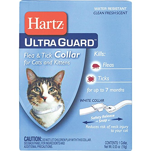 Hartz UltraGuard Flea & Tick Cat and Kitten Collar, White 1 ea