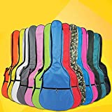 HOT SEAL 5MM Waterproof Durable Colorful Conventional Guitar Case Bag with Storage (40in, Pink)