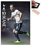Bundle - 2 Items - Tottenham Hotspur Harry Kane 2016 - 2017 Poster - 91.5 x 61cms (36 x 24 Inches) and a Set of 4 Repositionable Adhesive Pads For Easy Wall Fixing