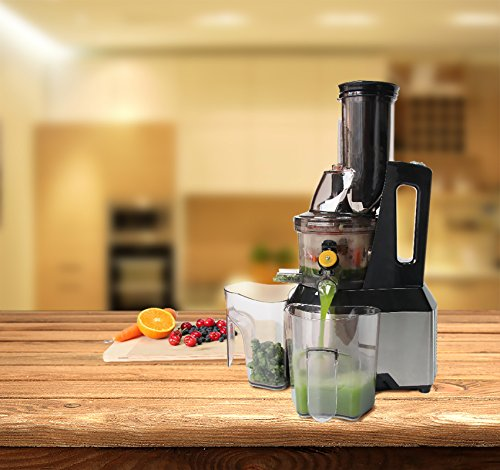 Masticating slow Juicer - Anti Oxidation Wide Chute Makes Tastier Fruit Juice - vertical Cold ...