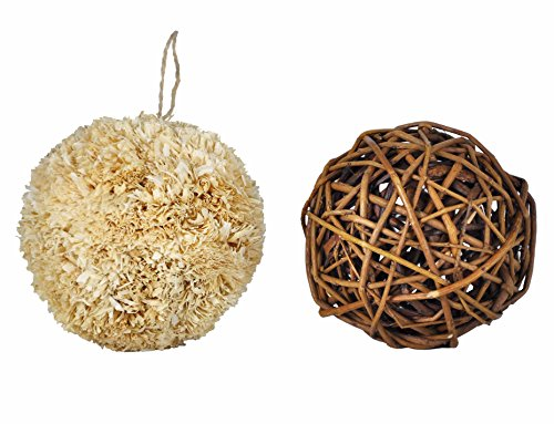 Niteangel Small Animal Activity Toy, Fun Pet Balls (Pack of 2) (Grass Willow)