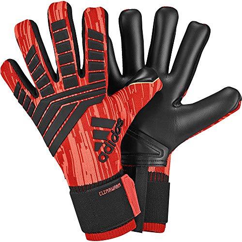 Sada pasajero Misión  adidas Clima Warm ACE18 Goalkeeper Glove- Buy Online in China at Desertcart