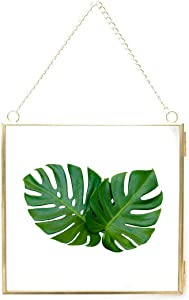 Outgeek Hanging Picture Frame Photo Frame Wall Mounting Glass Floating Square Frame DIY Artwork Pressed Flowers Dried Plant Specimen Display Modern Home Decor 6.3in