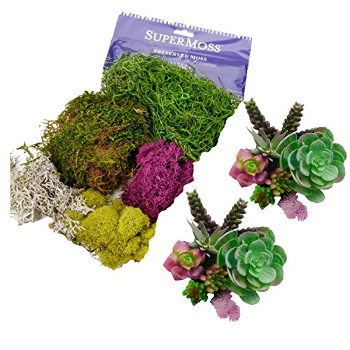 Artificial Succulent Plants | SuperMoss Bundle, Create Unique Decor Garden Arrangements with these Large & Small 14 Colorful Pieces. DIY these unpotted Fake - Faux - cactus in any pot or terrarium. by Ellie Arts Bundle