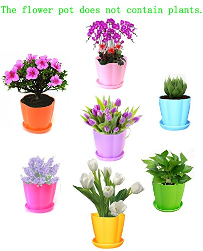 Henslow Flower Petal Type Candy Color Plastic Resin Planter Tray --Sunlight Ageing Resistance, Resistance To Corrosiveness, Ideal For Indoor And Outdoor.(7PCS) (Fish Tank Starter Kit 50 Gallon compare prices)