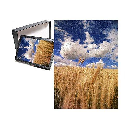 252 Piece Puzzle of USA, Eastern Washington, Palouse Area, View of Wheat Field (11189543)