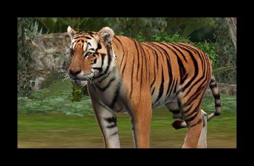 Zoo Resort - Nintendo 3DS