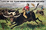 Buffalo Bill - Life on the Plains - Mexican Vaqueros Vintage Poster USA c. 1885 (36x54 Giclee Gallery Print, Wall Decor Travel Poster)