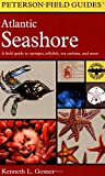 Field Guide to the Atlantic Seashore