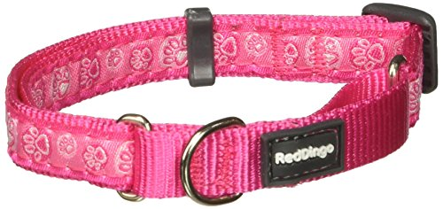 Red Dingo Martingale Paw Impressions Collar, Small, Hot Pink