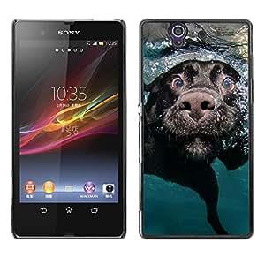 PC/Aluminum Funda Carcasa protectora para Sony Xperia Z L36H C6602 C6603 C6606 C6616 Black Labrador Retriever Muzzle Dog / JUSTGO PHONE PROTECTOR