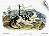 John James (1785-1851) Audubon Wall Peel Wall Art Print entitled Hare Indian, or Mackenzie River, dog, an extinct breed of domesticated dog