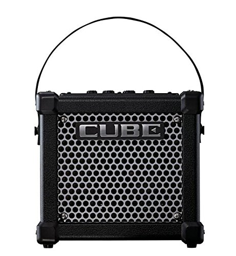 Roland Micro Cube GX 3-watt 1-channel 1x5'' Battery-powered Guitar Combo Amplifier with Free 8 Universal Electronics AA Batteries