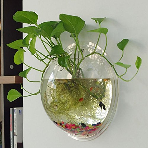 Sweetsea Creative Acrylic Hanging Wall Mount 1 Gallon Fish Tank Bowl Vase Aquarium Plant Pot Fish Bubble Aquarium Decor – Clear (Large)