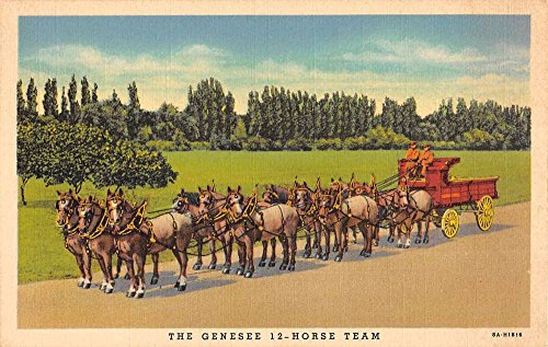 Rochester New York Genesee Brewery 12 Horse Carriage Antique Postcard K40499 (Genesee 12 Horse)