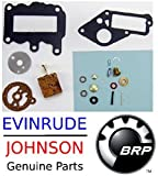 Johnson Evinrude Outboard Engine 382048 Premium Carburetor Repair Kit 1964-1973 9.5 HP BRP# 765630