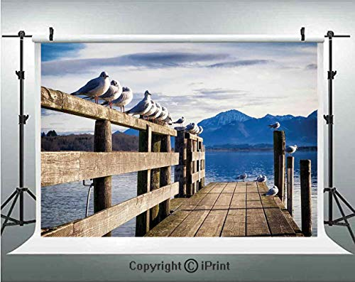 Landscape Photography Backdrops Seagulls on Old Wooden Jetty Lakeside Hills in Bavaria Landscape Picture,Birthday Party Background Customized Microfiber Photo Studio Props,10x6.5ft,Blue Tan White