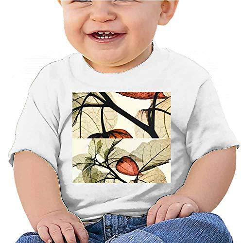 Christian T-Shirt Annual Rings Waterfall Pine Trees Scenery Tee for Boys Black