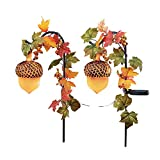 Collections Etc Solar Light Up Acorn and Leaves Fall Garden Stakes