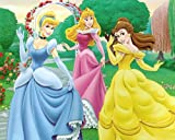 Disneys Princesses - FLEECE BLANKET - Soft Girls Room Decor