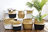 POTEY 710201 Seagrass Plant Basket - Hand Woven