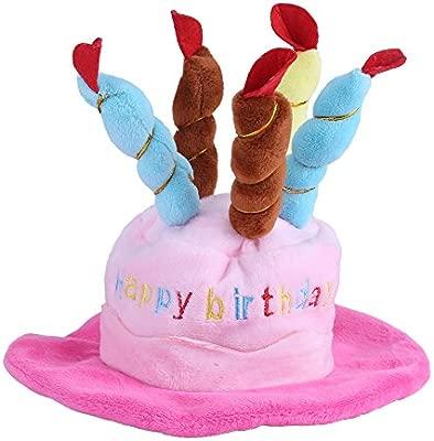 Pasamer Sombrero De Cumpleaños para Mascotas, Diseño De ...