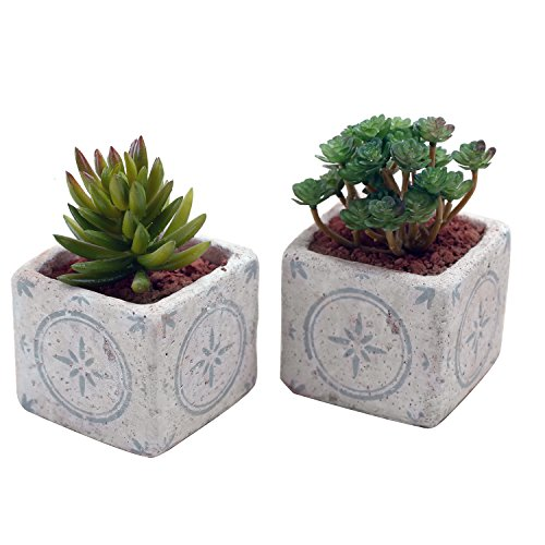 Mini Hand-Painted Cement Square Succulent Plant Pots, Flower Planters Containers, Set of 2, Gray