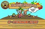 NaturesGoodGuys Beneficial Nematodes SF Steinernema