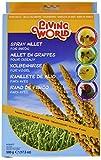 Living World 82477 Spray Millet for Birds, 500gm, 17.5-Ounce