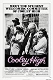 Cooley High Movie Poster or Canvas