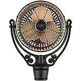 Fanimation FPH210AC Old Havana , Antique Copper/Black, Motor Only