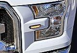 Whelen, Micron, Super LED, Flush Surface Mount