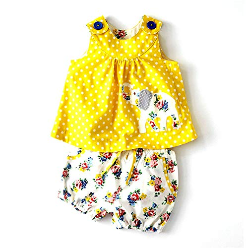 Cute Baby Girl Spring Summer Stripe Sleeveless Tee Floral Short Pants Set Outfits Yellow ()