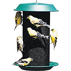 AUDUBON/WOODLINK Magnum Thistle Bird Feeder Green 4 Quart Cap