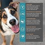 Earthborn Holistic Coastal Catch Grain-Free Dry Dog