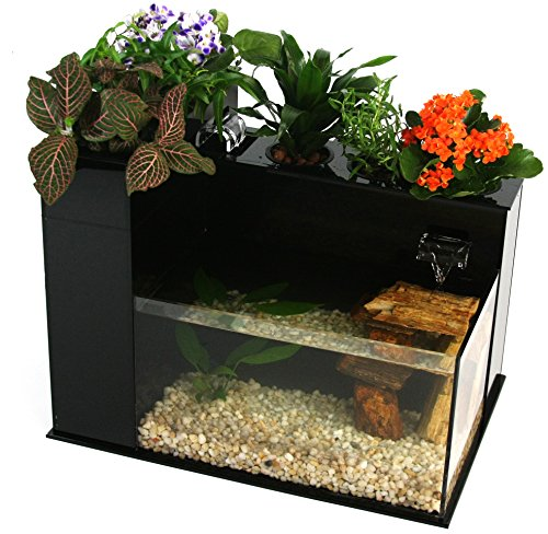 51r72X3te0L - Fin to Flower Aquaponic Aquarium Large System C