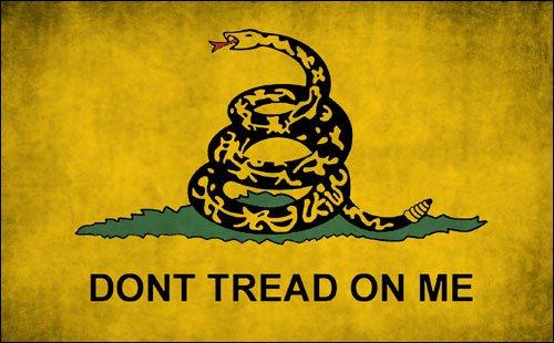 (American Vinyl Vintage Don't Tread Flag Sticker (Distressed Dont Gadsden)
