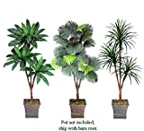 THREE 6' Artificial Palm Tree Yucca Bird Nest Fan Palm Silk Plants with No Pot