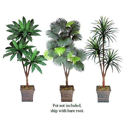 THREE 6' Artificial Palm Tree Yucca Bird Nest Fan Palm Silk Plants with No Pot by Black Decor Home