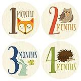 Fox, Monthly Baby Sticker, Woodland, Baby Gift, Baby Boy