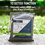 Nature Fresh Air Purifier Bags - Activated Charcoal Bags Odor Absorber, Odor Eliminator for House, Shoe Deodorizer, Car Deodorizers, Closet Air Fresheners for Home, Room Deodorizer for Home, Shoe Odor
