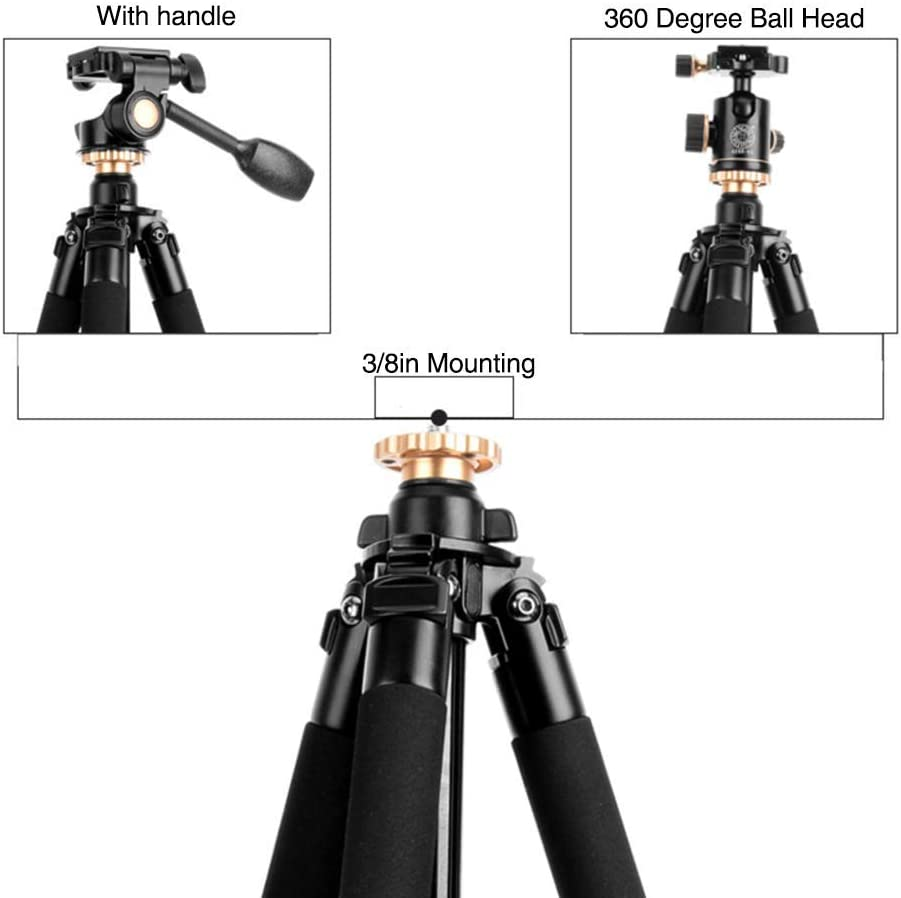 XIAOXIAO 189Cm Portable Travel Tripod 74.4In Lightweight Aluminum Alloy Tripods 3 8In Mount Compatible DSLR SLR Video Camera Camera