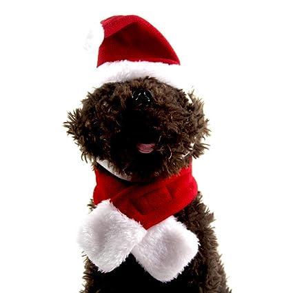Ogquaton 1 Unidades Sombrero de Papá Noel Ajustable Collares Corbata para  Mascota Pequeño Gatito Perrito de fe9753d1b38