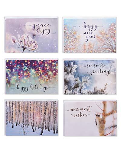 American Greetings Holiday Card Bundle, Nature (48-Count) (Cards Seasons Greetings Christmas)