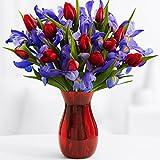 ProFlowers - A Dozen Hugs, a Dozen Kisses (with FREE glass vase) - Flowers